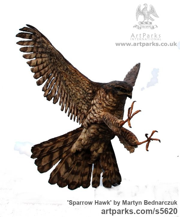Wood Carving Wild Bird sculpture by sculptor Martyn Bednarczuk titled: 'Sparrow Hawk (Carved and Painted Wood Flying Raptor Bird carving)'