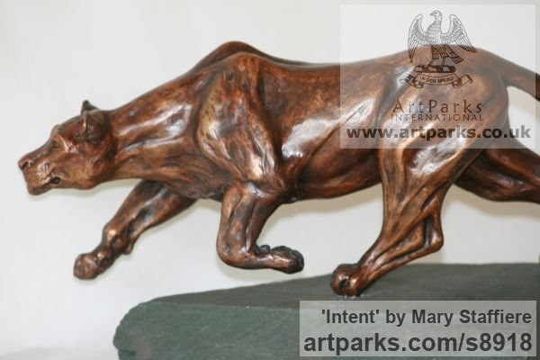 Bronze Cats Wild and Big Cats sculpture by sculptor Mary Staffiere titled: 'Intent (Little Prowling Hunting Lioness sculptures)' - Artwork View 2