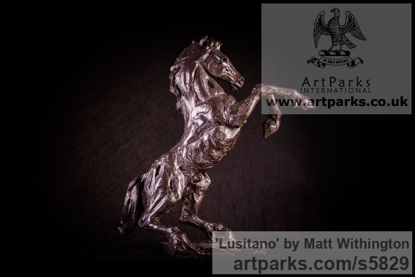 Bronze Horse Sculpture / Equines Race Horses Pack HorseCart Horses Plough Horsess sculpture by sculptor Matt Withington titled: 'Lusitano (Small Horse Rearing Bronze Indoor sculpture/statue/statuette)' - Artwork View 4
