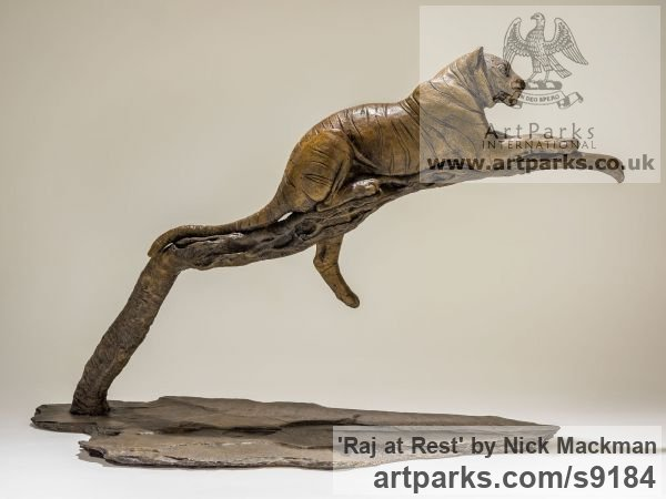 Bronze Cats sculpture by sculptor Nick Mackman titled: 'Raj at Rest (Tiger Resting Drowsing on Branch statue)'