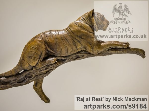 Bronze Cats sculpture by sculptor Nick Mackman titled: 'Raj at Rest (Tiger Resting Drowsing on Branch statue)' - Artwork View 4