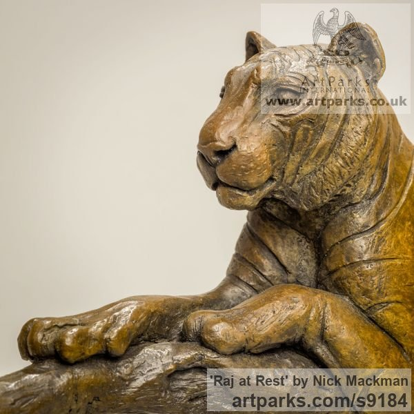 Bronze Cats sculpture by sculptor Nick Mackman titled: 'Raj at Rest (Tiger Resting Drowsing on Branch statue)' - Artwork View 5