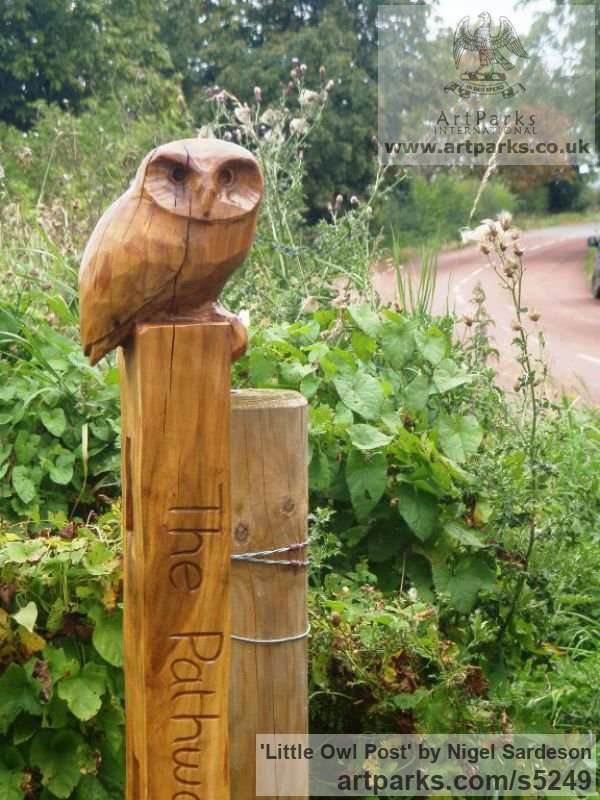 Oak Wood Varietal Mix of Bird Sculptures or sculpture by sculptor Nigel Sardeson titled: 'Little Owl (Small Carved Wood on Post carvings/statues/statuettes)' - Artwork View 2