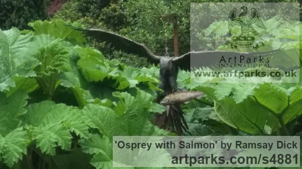 Welded mild steel Varietal Mix of Bird Sculptures or sculpture by sculptor Ramsay Dick titled: 'Osprey with Salmon (Steel Raptor Predator life size garden/Yard statue)' - Artwork View 2