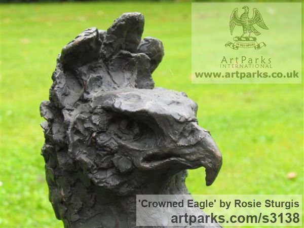 Bronze Garden Or Yard / Outside and Outdoor sculpture by sculptor Rosie Sturgis titled: 'Crowned Eagle (Bronze Bird of Prey sculpture)' - Artwork View 3