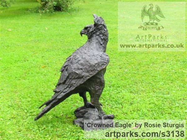 Bronze Garden Or Yard / Outside and Outdoor sculpture by sculptor Rosie Sturgis titled: 'Crowned Eagle (Bronze Bird of Prey sculpture)' - Artwork View 4
