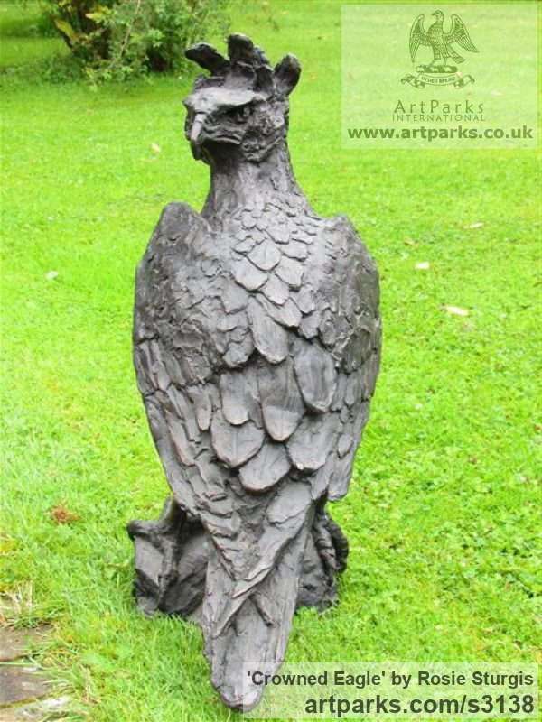 Bronze Garden Or Yard / Outside and Outdoor sculpture by sculptor Rosie Sturgis titled: 'Crowned Eagle (Bronze Bird of Prey sculpture)' - Artwork View 5
