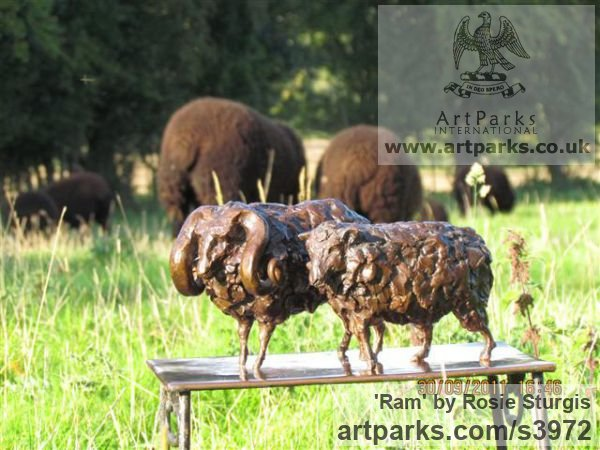 Bronze Farm Yard sculpture by sculptor Rosie Sturgis titled: 'Ram (Small Bronze Horned Male Sheep sculpturette)' - Artwork View 4