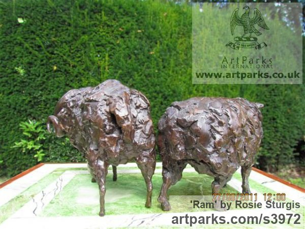 Bronze Farm Yard sculpture by sculptor Rosie Sturgis titled: 'Ram (Small Bronze Horned Male Sheep sculpturette)' - Artwork View 5