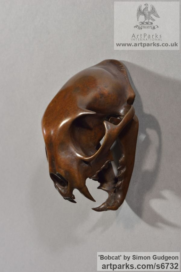 Bronze Cats Wild and Big Cats sculpture by sculptor Simon Gudgeon titled: 'Bobcat (Bronze Head/Skull/Trophy/Mask statue/statuette/figurine/statue)' - Artwork View 1