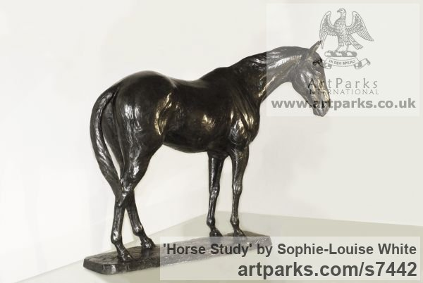 Bronze Horse Sculpture / Equines Race Horses Pack HorseCart Horses Plough Horsess sculpture by sculptor Sophie-Louise White titled: 'Horse study (Small Bronze Relaxed Horse sculpturette)'