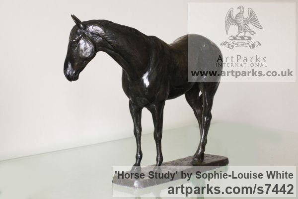 Bronze Horse Sculpture / Equines Race Horses Pack HorseCart Horses Plough Horsess sculpture by sculptor Sophie-Louise White titled: 'Horse study (Small Bronze Relaxed Horse sculpturette)' - Artwork View 2