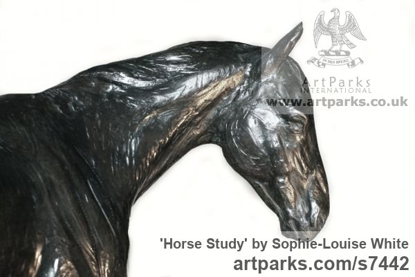 Bronze Horse Sculpture / Equines Race Horses Pack HorseCart Horses Plough Horsess sculpture by sculptor Sophie-Louise White titled: 'Horse study (Small Bronze Relaxed Horse sculpturette)' - Artwork View 3