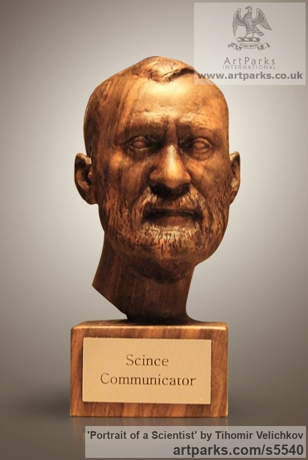 Walnut-tree Portrait Sculptures / Commission or Bespoke or Customised sculpture by sculptor Tihomir Velichkov titled: 'Portrait of a Scientist (Carved in Wood Portrait Head/Bust sculpture)'