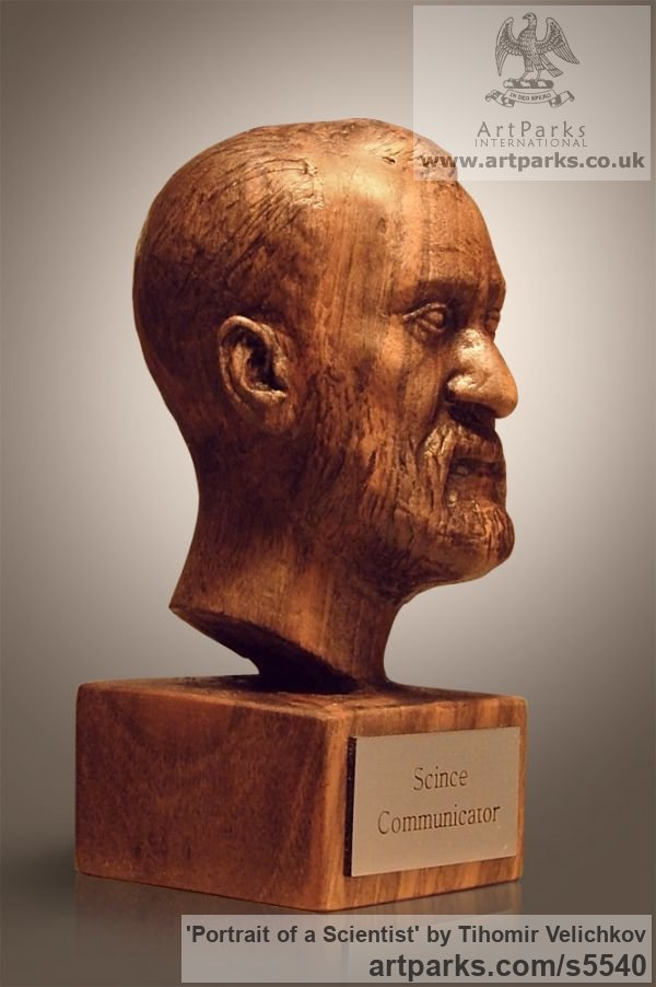 Walnut-tree Portrait Sculptures / Commission or Bespoke or Customised sculpture by sculptor Tihomir Velichkov titled: 'Portrait of a Scientist (Carved in Wood Portrait Head/Bust sculpture)' - Artwork View 2