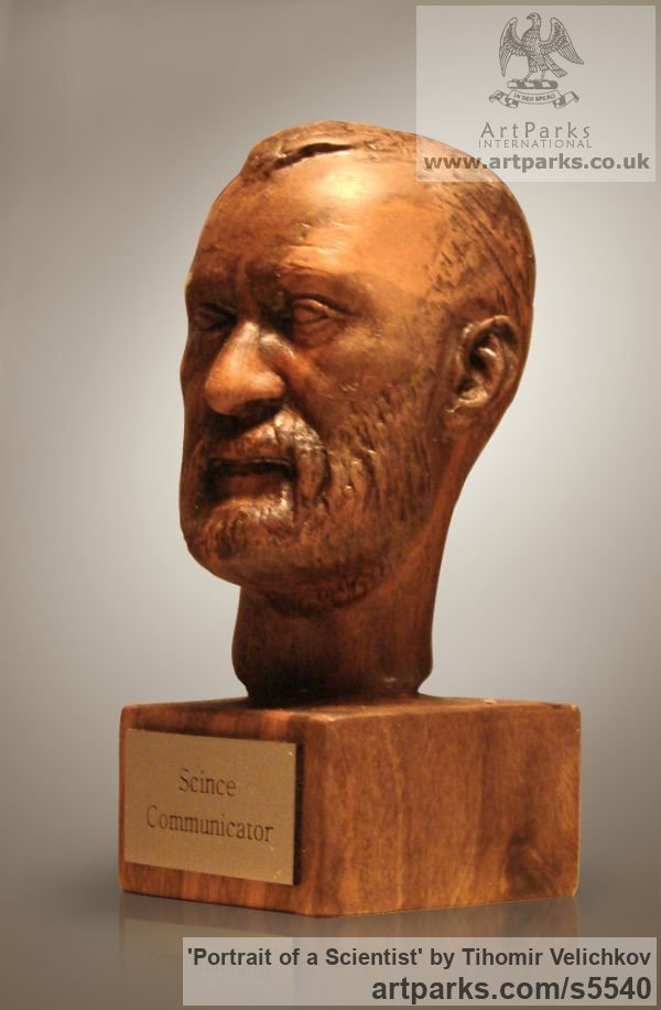 Walnut-tree Portrait Sculptures / Commission or Bespoke or Customised sculpture by sculptor Tihomir Velichkov titled: 'Portrait of a Scientist (Carved in Wood Portrait Head/Bust sculpture)' - Artwork View 3
