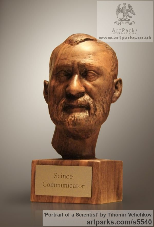 Walnut-tree Portrait Sculptures / Commission or Bespoke or Customised sculpture by sculptor Tihomir Velichkov titled: 'Portrait of a Scientist (Carved in Wood Portrait Head/Bust sculpture)' - Artwork View 4