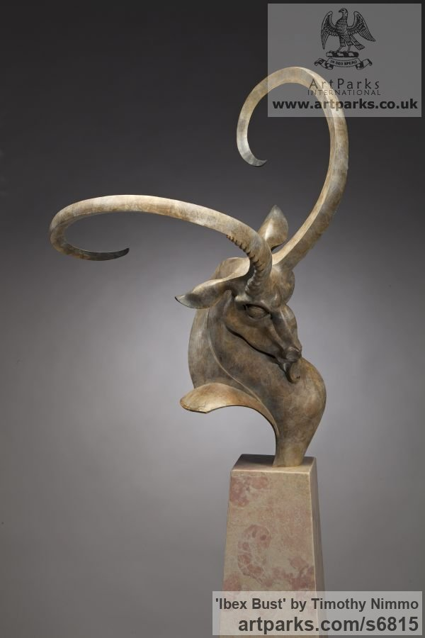 Bronze, travertine Abstract Contemporary Modern Outdoor Outside Garden / Yard sculpture statuary sculpture by sculptor Timothy Nimmo titled: 'Ibex Bust (Buck Animal Head Curving Horns statues)' - Artwork View 4