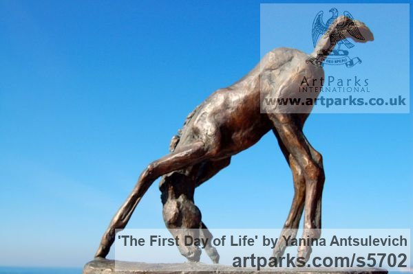 Bronze Horse Sculpture / Equines Race Horses Pack HorseCart Horses Plough Horsess sculpture by sculptor Yanina Antsulevich titled: 'The First Day of Life (Little/Small bronze Baby Foal statues/statuette)'