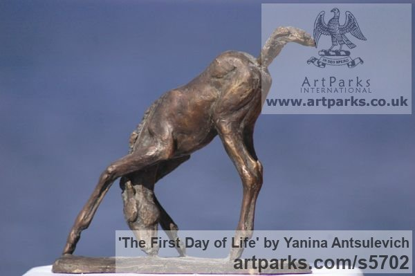 Bronze Horse Sculpture / Equines Race Horses Pack HorseCart Horses Plough Horsess sculpture by sculptor Yanina Antsulevich titled: 'The First Day of Life (Little/Small bronze Baby Foal statues/statuette)' - Artwork View 2