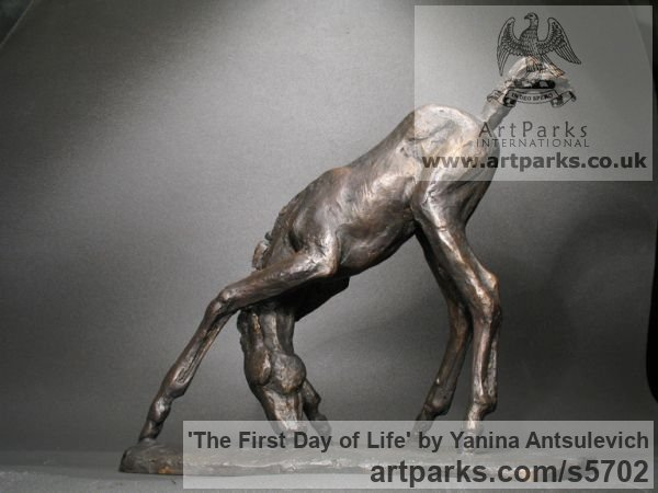 Bronze Horse Sculpture / Equines Race Horses Pack HorseCart Horses Plough Horsess sculpture by sculptor Yanina Antsulevich titled: 'The First Day of Life (Little/Small bronze Baby Foal statues/statuette)' - Artwork View 3