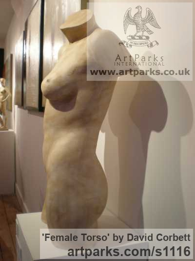 Plaster Torsos Chests Females / Women / Girls / Damsels sculpture statuary sculpture by sculptor David Corbett titled: 'female Torso (nude life size Indoors Naked sculptures)' - Artwork View 3