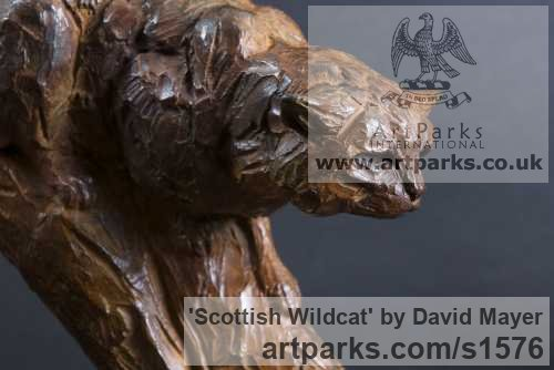 Bronze Cats Wild and Big Cats sculpture by sculptor David Mayer titled: 'Scottish Wildcat (Little Bronze Prowling statuette)' - Artwork View 1