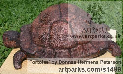Terracotta Clay Wild Animals and Wild Life sculpture by sculptor Donnas Hermena Peterson titled: 'Tortoise (Life Like lLfe Size ceramic sculpture)' - Artwork View 4