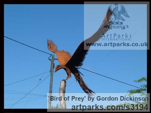 Mild steel Varietal Mix of Bird Sculptures or sculpture by sculptor Gordon Dickinson titled: 'Bird of Prey (Falcon Raptor Eagle Hawk Harrier Alighting Landing statue)' - Artwork View 4