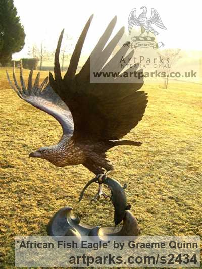 Bronze Big Large Birds sculpture sculpture by sculptor Graeme Quinn titled: 'life size African Fish Eagle (Bronze Flying Raptor sculptures/statues)'