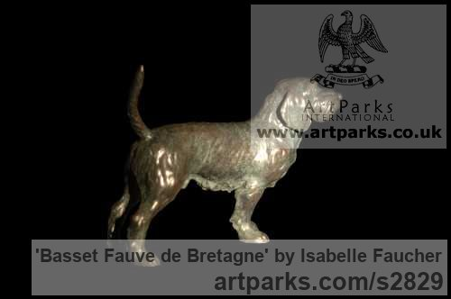 Bronze Dogs sculpture by sculptor Isabelle Faucher titled: 'Basset Fauve de Bretagne (Bronze Commission statue)' - Artwork View 1