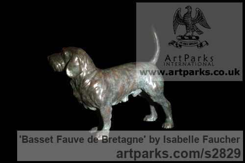 Bronze Dogs sculpture by sculptor Isabelle Faucher titled: 'Basset Fauve de Bretagne (Bronze Commission statue)' - Artwork View 2