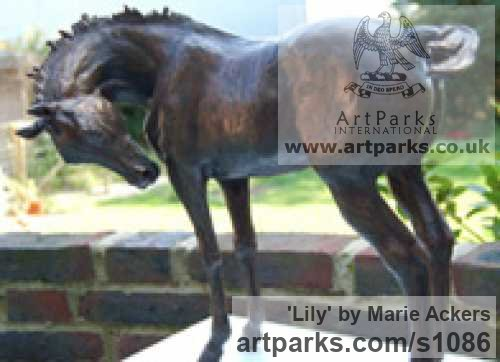Bronze Horse Sculpture / Equines Race Horses Pack HorseCart Horses Plough Horsess sculpture by sculptor Marie Ackers titled: 'Lily (Horse Little Indoor bronze sculpture for sale)' - Artwork View 2
