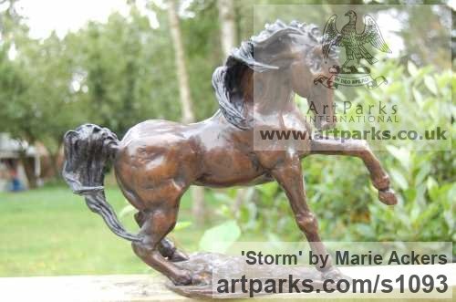 Bronze Horse Sculpture / Equines Race Horses Pack HorseCart Horses Plough Horsess sculpture by sculptor Marie Ackers titled: 'Storm (Stallion sculpture/statuettes/figurines/statue Small Bronze)'