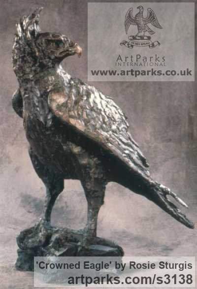 Bronze Garden Or Yard / Outside and Outdoor sculpture by sculptor Rosie Sturgis titled: 'Crowned Eagle (bronze Bird of Prey sculpture)' - Artwork View 1