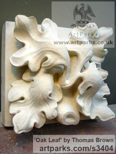 Lime stone Varietal cross section of Floral, Fruit and Plantlife sculpture by sculptor Thomas Brown titled: 'Oak Leaf (Carved Architectural stone statue/sculpture to Commission)'