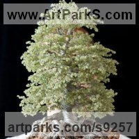 Tree Plant Shrub Bonsai sculpture statue statuette by sculptor artist Alarik Greenland titled: 'Castles Beech (Minatuere Jewelled Tree sculpture)' in 700 peridot gemstones and wire