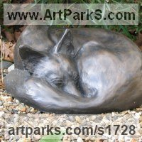 Field Sports, Game Birds and Game Animals Sculpture by sculptor artist Jon Bickley titled: 'Sleeping Fox (bronze Dozing life size Curled Up statue)' in Bronze