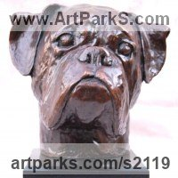 Commission and Custom and Bespoke sculpture Statues by sculptor artist Marie Ackers titled: 'Boxer Dog Head study II (Portrait Pet Bust Portrait Commission sculpture)' in Bronze