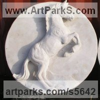 Classical Sculpture and Statues by sculptor artist Martyn Bednarczuk titled: 'Rearing Horse (Carved Lime stone Round Panel Plaque sculpture)' in Limestone
