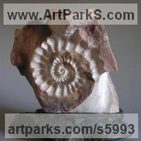 Shells Sculpture including Land and Sea and Freshwater Shells Fossil Shells by sculptor artist Tabitha Sheehn Davis titled: 'Ammonite (Carved marble life size Extinct Fossil Indoor statuette/statue)' in Marble