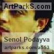 Profile image of Senol Podayva