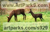 Steel and Willow Woven Willow Animal and Figurative Sculptures or Statues and Art sculpture by Alicia Castrillo titled: 'Grazing Deer and Baby (Willow Hind and Fawn statues)'