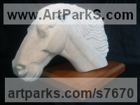 Portland Stone Animal Kingdom sculpture by Duncan Park titled: 'Horse in Motion (Carved White stone Horse Head Bust statue statuette)'