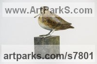 Bronze Small bird sculpture by sculptor Eddie Hallam titled: 'Snipe (Life-size Bronze statue of Snipe standing on a post)'