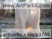 Wood Organic / Abstract sculpture by Elwin de Wolf titled: 'Complex abstract Form (Cantemporary Carved Wood statue)'