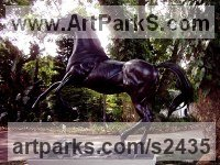 Bronze Horses Outdoors, Outside, Life Size, Big, Large, Huge sculpture memorials commissions custom made sculpture by sculptor Graeme Quinn titled: 'Stallion (Lifesize Bronze Prancing Fr[sking Skitterin Horse sculpture)'