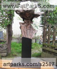 Oak & slate Busts and Heads sculpture statuettes Commissions Bespoke Custom Portrait Memorial Commemorative sculpture or sculpture by sculptor Jon Evans titled: 'Ceridwen (Semi Natural CarvedTree trunk Wood Witch sculpture carving)'