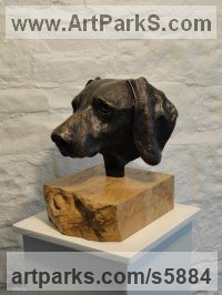 Bronze Dogs sculpture by sculptor Joseph Hayton titled: 'Weimaraner Portrait (Bronze Dogs Head Commission statue)'