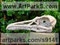 Granito, talla directao Wild Animals and Wild Life sculpture by Juan Cabeza Quiles titled: 'cr�neo de gavi�n hiperb�reo (Carved Bird Scull)'